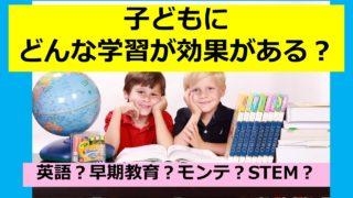 子どもの教育 モンテッソーリ教育 STEM教育 早期教育